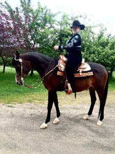 Adult rider on her horse at western show